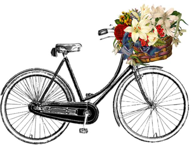 bicycle-910398_960_720