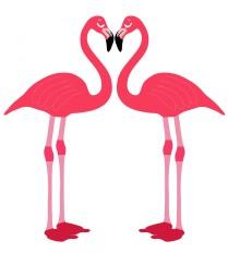 flamingo-birds-love-heart